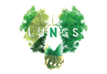 "Second Space: ""Lungs"""